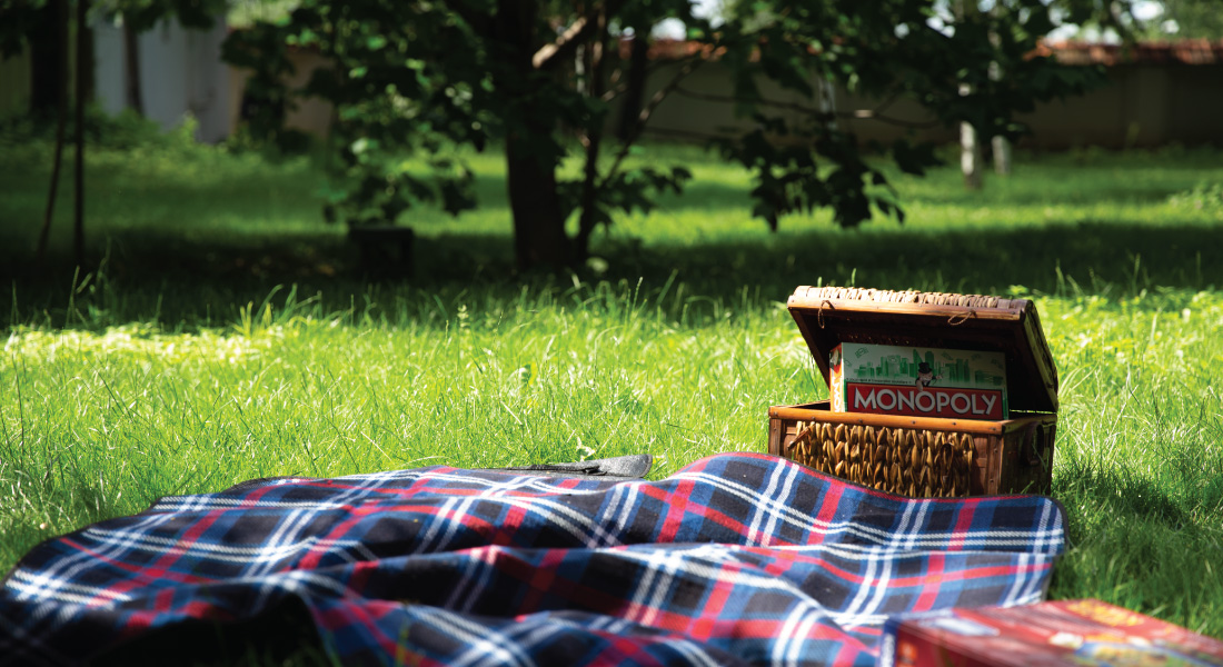 picnic-25-iul-site